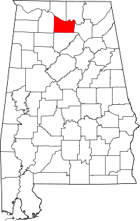 Morgan County vital records