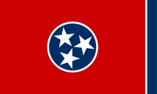 Tennessee birth death records