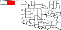 Texas County vital records